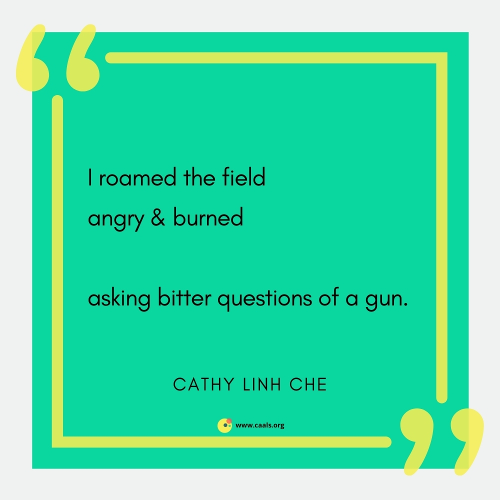 """""""I roamed the field / angry & burned // asking bitter questions of a gun."""" --Cathy Linh Che"""