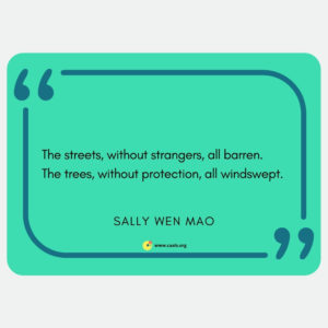 "The streets, without strangers, all barren. / The trees, without protection, all windswept."" Sally Wen Mao"