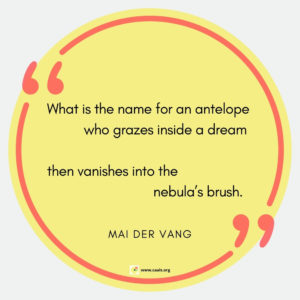 """What is the name for an antelope           who grazes inside a dream  then vanishes into the                           nebula's brush."" --Mai Der Vang"