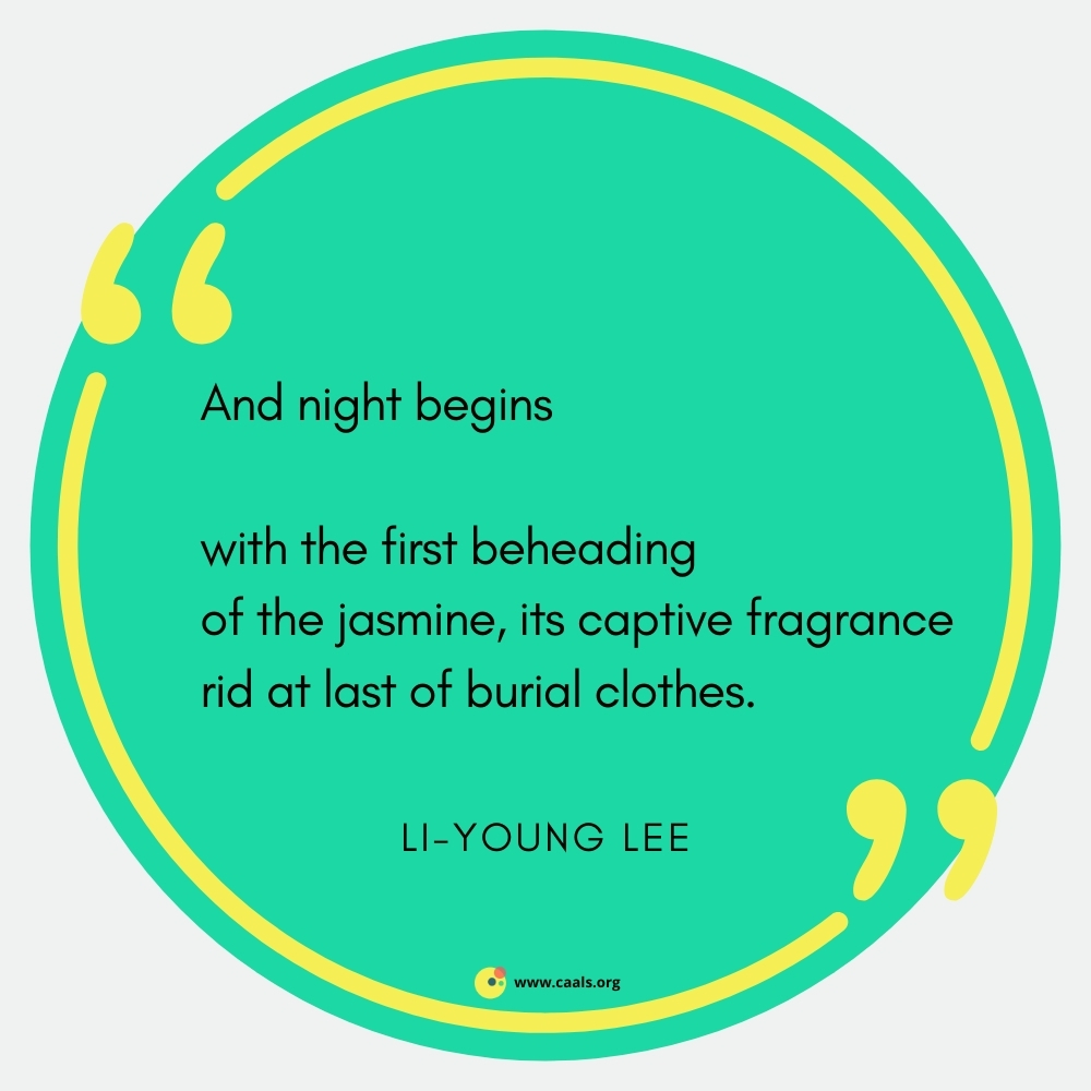 """""""And night begins // with the first beheading / of the jasmine, its captive fragrance / rid at last of burial clothes."""" --Li-Young Lee"""
